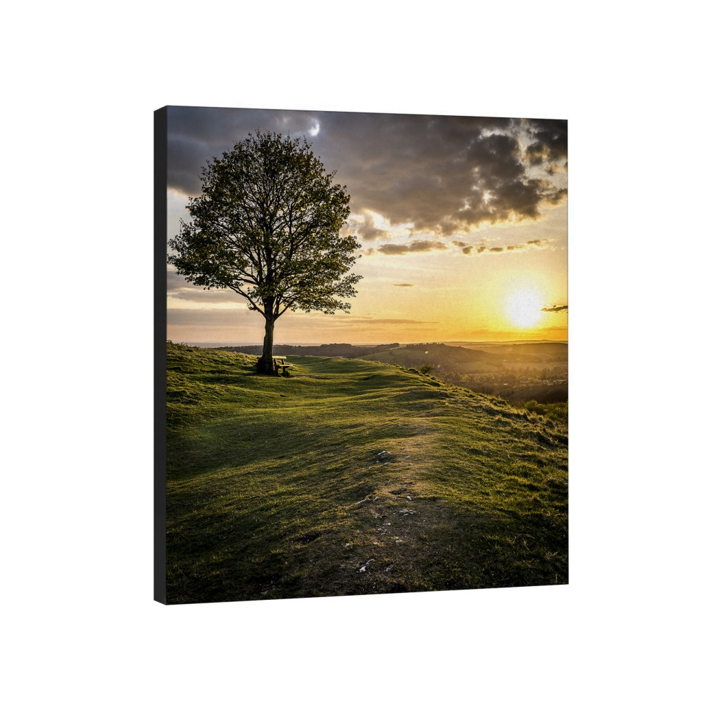 Rolling Hills Canvas Wall Art